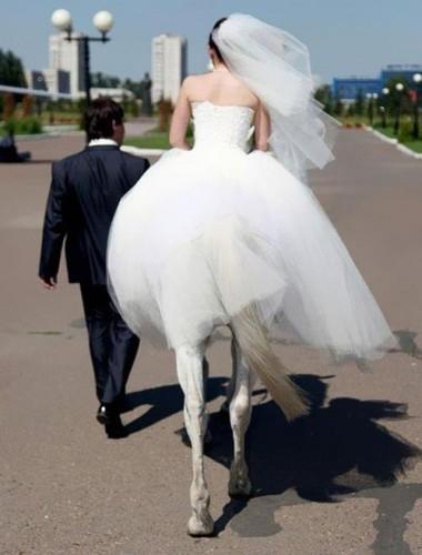 delightful half bride